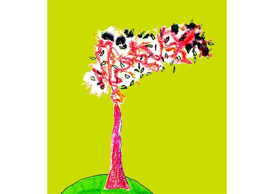 tree gr map 2 600×400 jpeg