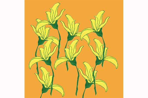 pattern flower art mariska eyck flowers MATS 400×600